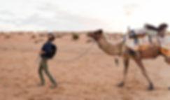 Gordon Best Photography camel