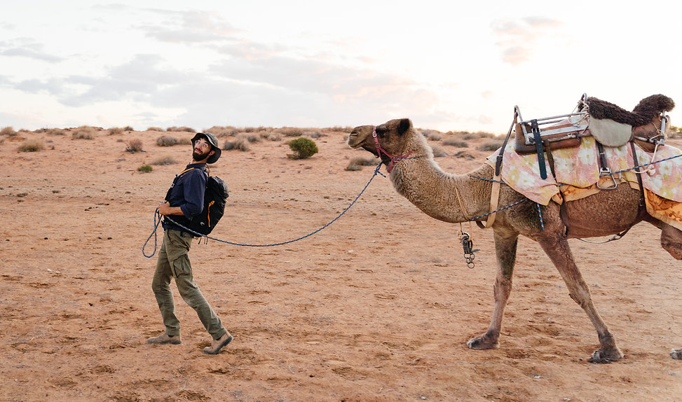 Gordon Best Photography camel