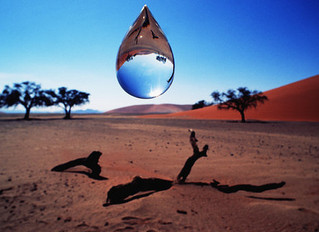 Arid - Zone water consumption ... for humans!