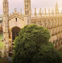 Cambridge-Stage-Destop.jpg