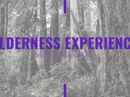 Lent 2021: Wilderness Experiences by Dana Williams