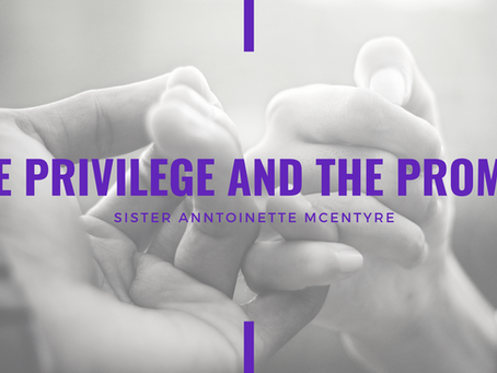 Advent 2020: The Privilege and the Promise by Anntoinette McEntyre