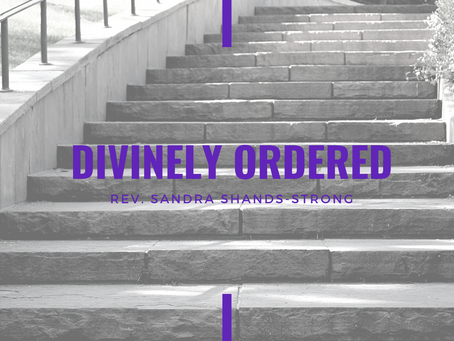Advent 2020: Divinely Ordered by Reverend Dr. Sandra Shands-Strong