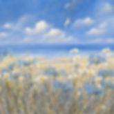 1-agapanthus (love flower).jpg