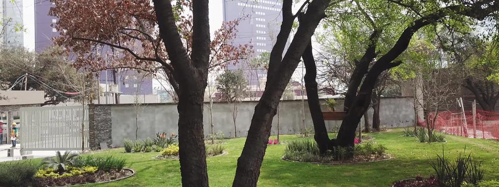 jardin bakara.MP4