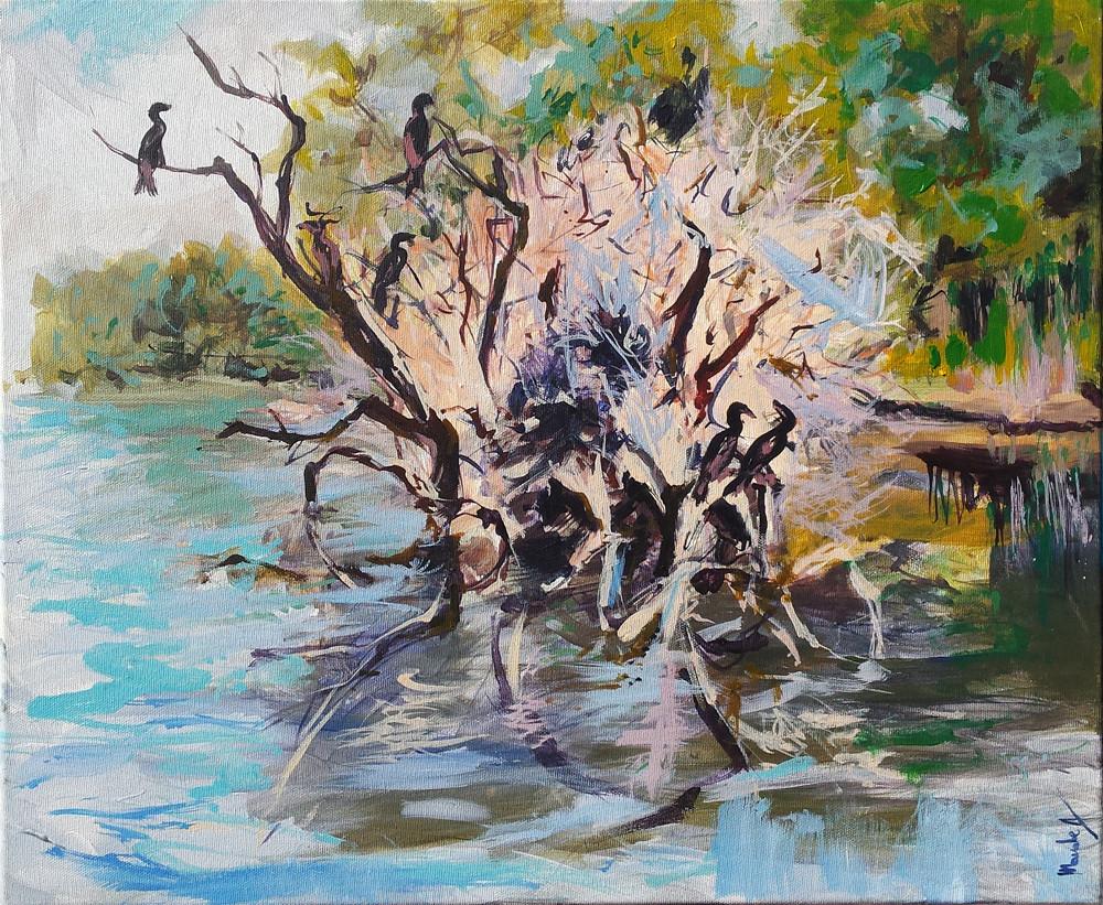 cormorani in Delta_acrilic pe panza 50 pe 60 cm autor Alina Manole_