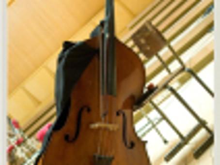 foto SIMN_profil sinfonietta