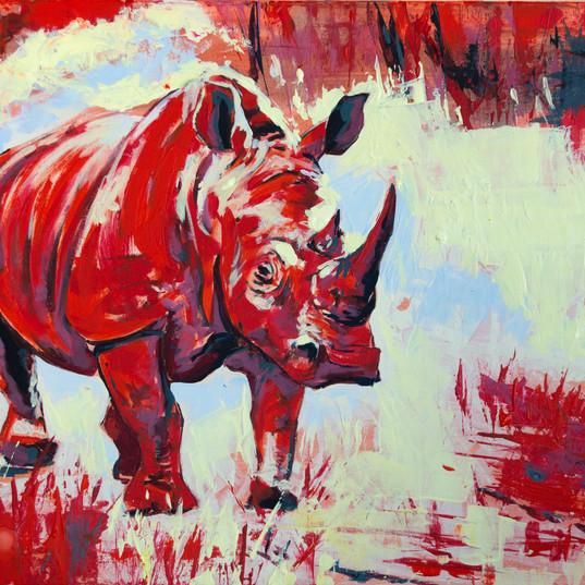 rhino_acrilic pe panza_50pe70 cm_autor A