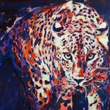 leopard_acrilic pe panza_50pe70cm_autorA