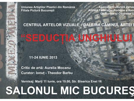 SMB7 (2013) SALONUL MIC BUCUREŞTI (SMB7 mixed media), ediţia a VII-a, 2013