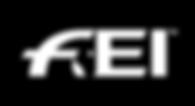 fei logo white.png