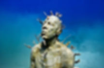 Musa Cancun Scuba Adventure | Wet Set Diving Adventures