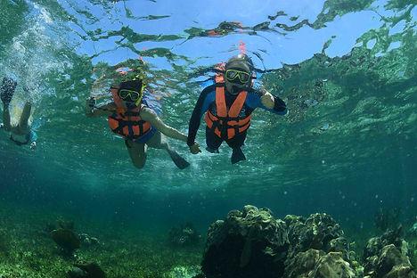 Silver Reef Snorkel | Wet set Diving Adventures