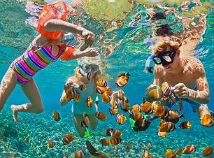 Family-Snorkelling-.jpg