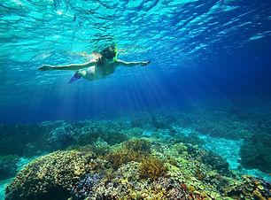Snorkeling_as_58839281.jpg
