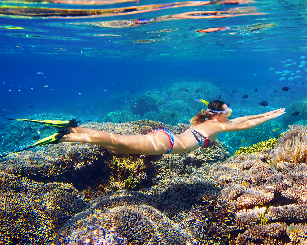Snorkeling in Puerto Morelos