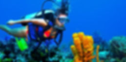 Cozumel Scuba Adventure | Wet Set Diving Adventures