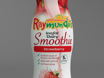 Raymundos Food Group 3D Model