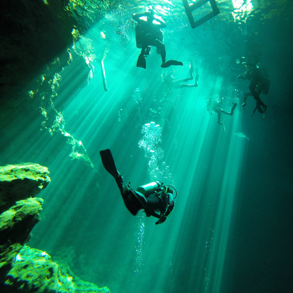 Cenote Diving in Mexico with Wet Set Diving Adventures