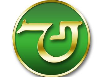 MYG Sports Apparel Logo