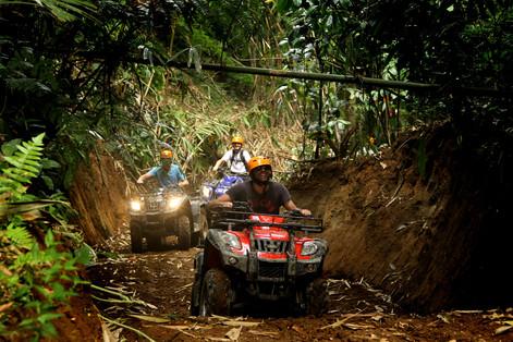 ATV in Puerto Morelos
