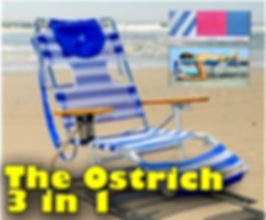Dewey Beach Delaware Beach Chair