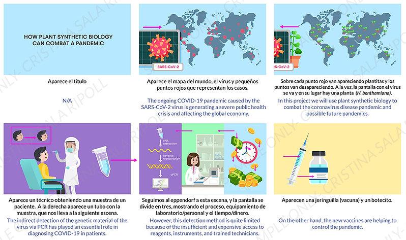 Storyboard_Synth plant biology showcase.