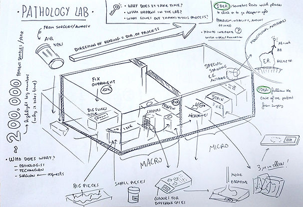 pathology-laboratory-overview-idea-sketc