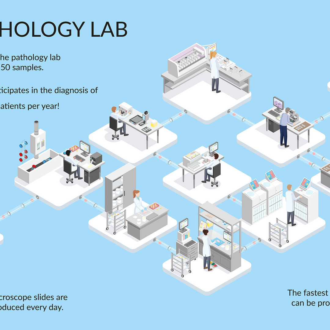 EXPLAINING THE PATHOLOGY LAB