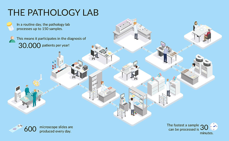 Pathology-Lab-Interactive-Platform-UMCG.