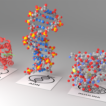 AUGMENTED REALITY MOLECULES