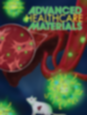 science, scientific communcation, cover, journal, mouse, liver, fibroblasts, rna, nanoparticles, microparticles, advanced healthcare materials, mainz, johannes gutenberg, treatment, scientific illustration, medical, nanomedicine, gene silencing, siRNA, nanohydrogel, particles, schuppan, zentel, therapy, fibrosis, cristina sala, sala ripoll, cris sala