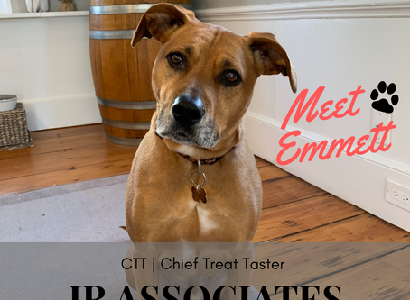 Emmett The Dog & Making Each Sale Count