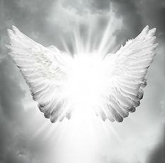 Angel WIngs 21.jpg