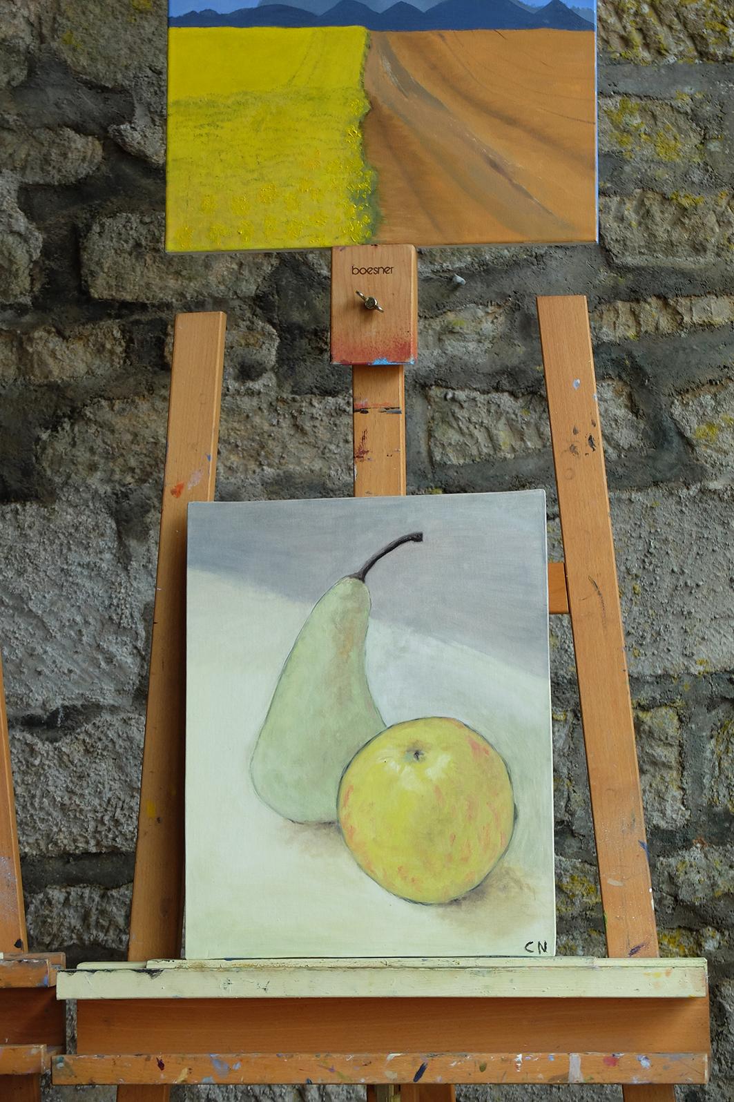 FSM 17 Peinture 52