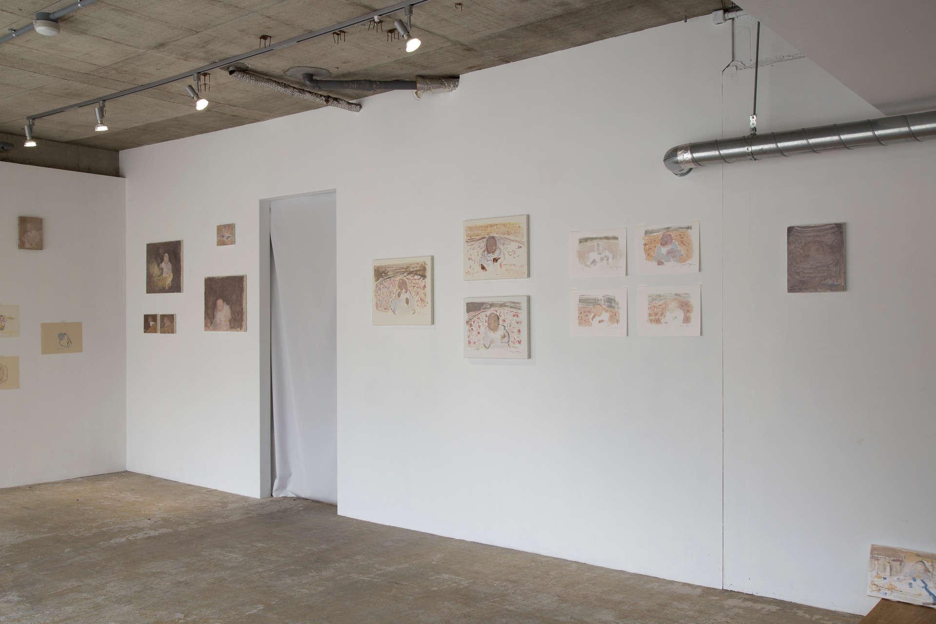 "Solo exhibition ""album"""