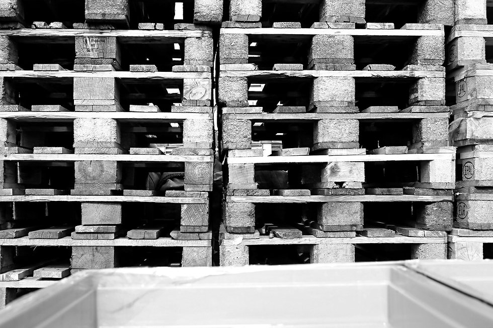 Kunststoff Abfall Verarbeitung Mahlgut Granulat Paletten Holz