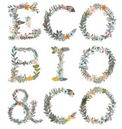 ECO BIO & CO