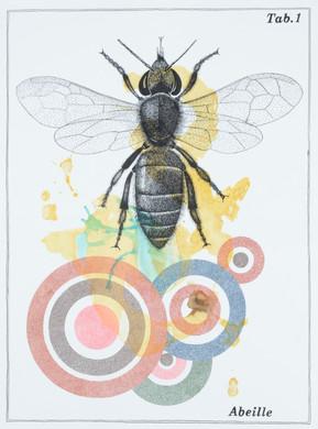 Alain ESCHENLAUER - abeille.jpg