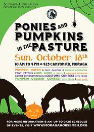 Ponies & Pumpkins