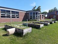 garden 2020 schools.jpg
