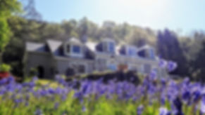 Ashfield House Boutique B&B with bluebells, near Loch Lomond
