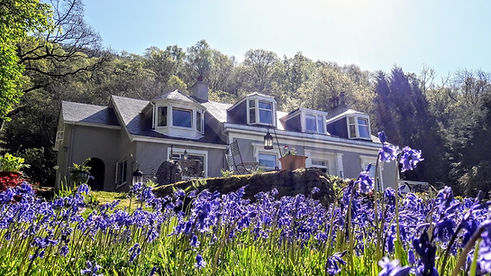 Ashfield House Boutique B&B with bluebells, near Loch Lomond