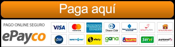 boton-pago-epayco.png
