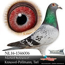 NL-16-1346006.jpg
