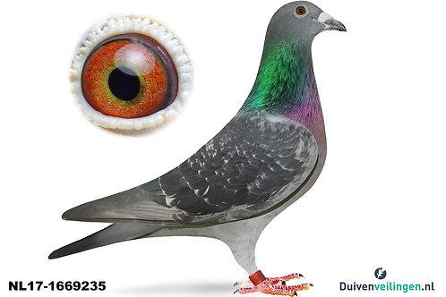 NL17-1669235 (Eijerkamp-Jellema)