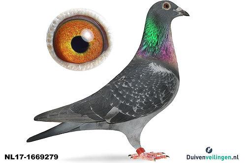 NL17-1669279 (Walpot-v/d Velden-Aarden)