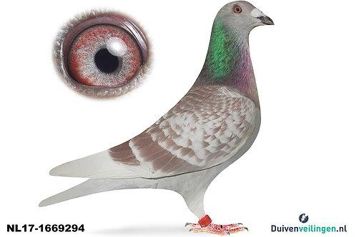 NL17-1669294 (Camphuis-De Klak)