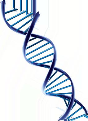 DNA____branding.png