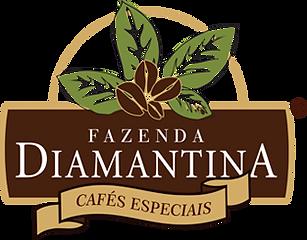 logo_diamantina.png